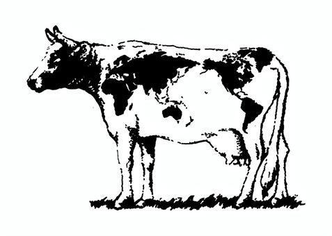 母牛世界地圖