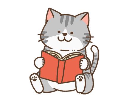 Reading cat 2