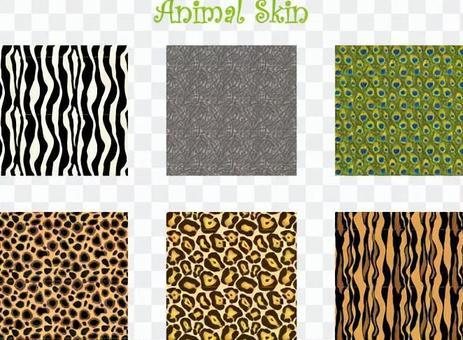 6 kinds Animal pattern