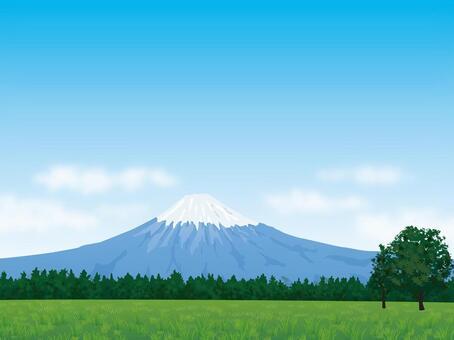 有綠色和新鮮的藍天背景的富士山04