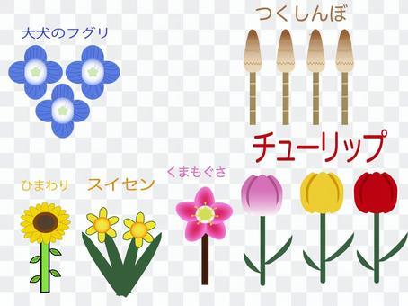 在春天和夏天盛開的花圖標圖