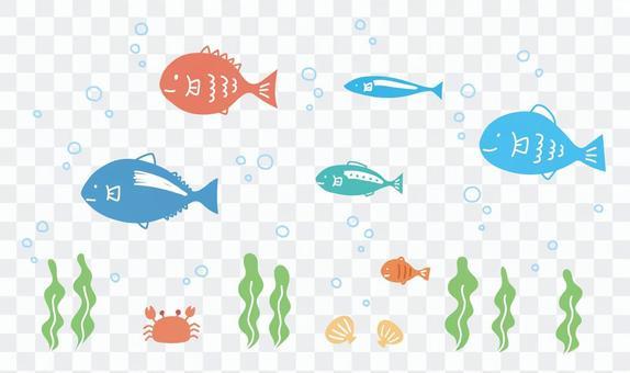 Fish sea creatures