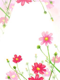 Flower frame card-autumn cosmos vertical