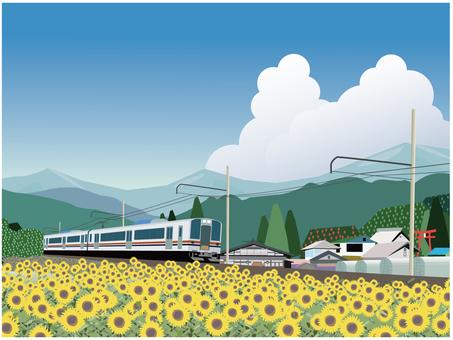 火車和向日葵田