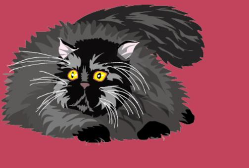 Black Persian cat's cat
