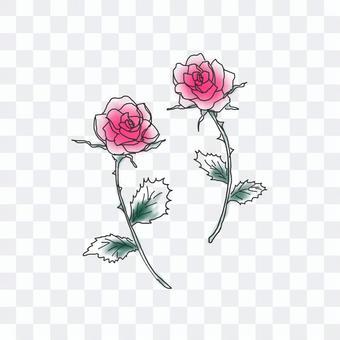 バラ-線画
