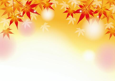 秋季框架1