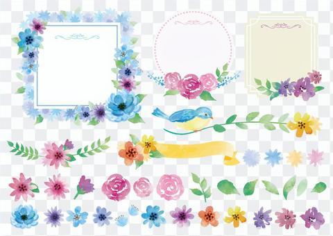 花卉的框架