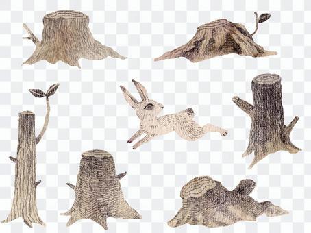 森林樹樁和兔子零件套裝