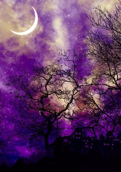 夜間森林城堡和紫色新月