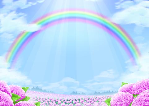 Landscape Illustration-Rainbow and Hydrangea Hill