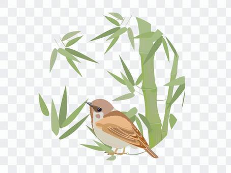 麻雀和竹叢