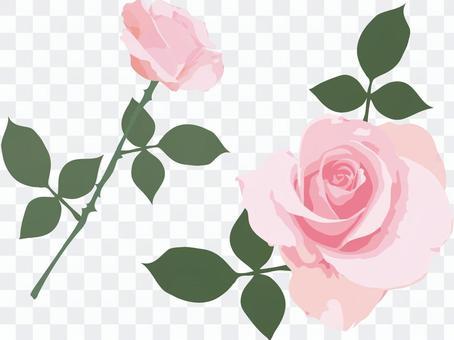 薔薇 イラスト ピンク