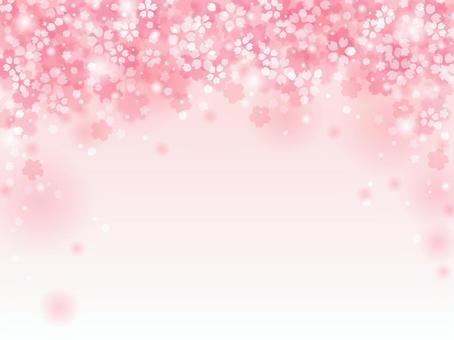 Sakura 83