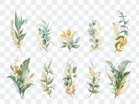 黃金和綠色植物收藏