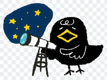 烏鴉天文台
