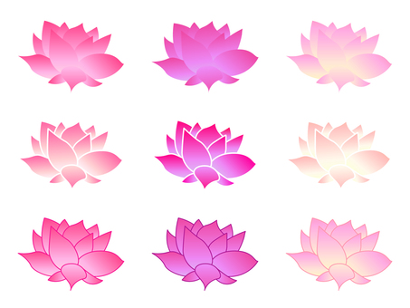 A lotus flower set with a soft and gentle color