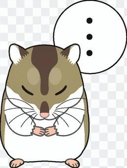 Djangarian倉鼠4