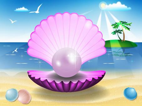 珍珠牡蠣和夏天的海