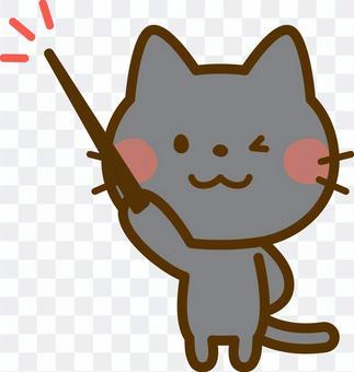 用一根棍子的黑貓