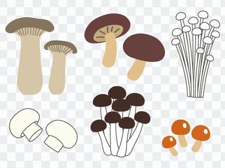 Cute mushroom icon set