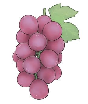 紅葡萄(帶葉)