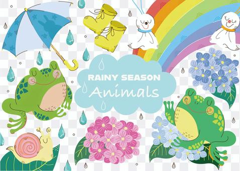 雨季的動物1