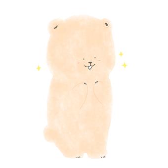 令人興奮的熊