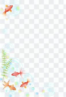 Goldfish frame cool in summer