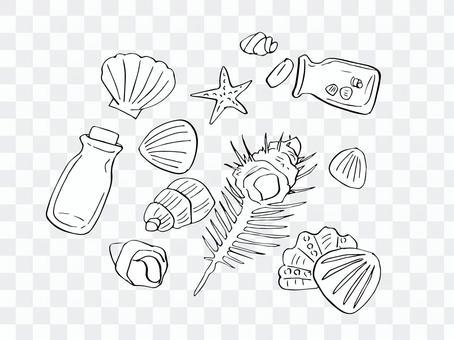 貝殼(畫線)-2