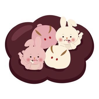 兔子(賞月13)