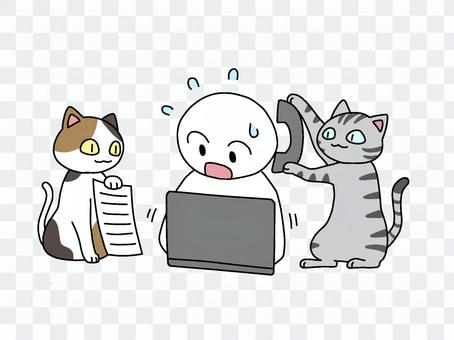 I also want to get the help of a cat