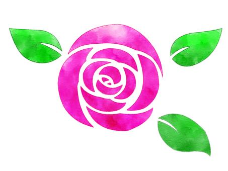 水彩風格玫瑰(玫瑰)粉色