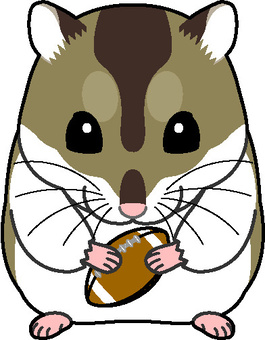 Djangarian倉鼠橄欖球