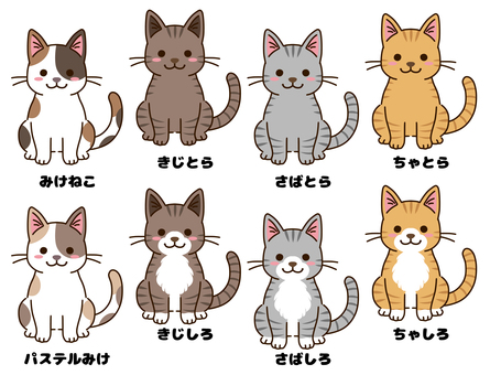 Cats of various coat colors
