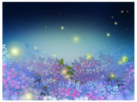 繡球螢火蟲之夜