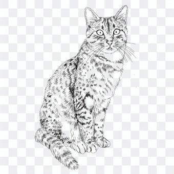 エジプシャマウ猫の絵/白黒手描きイラスト