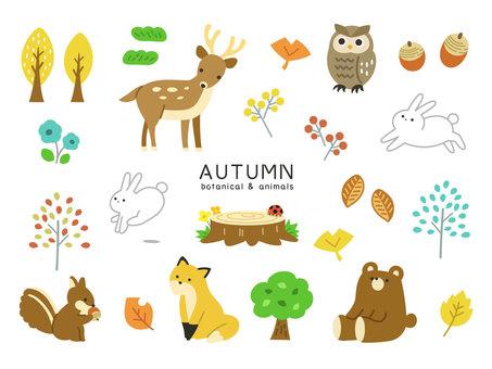 秋季植物和動物圖標