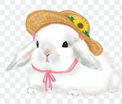兔子和草帽(帶向日葵)