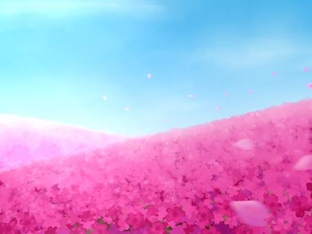花場背景圖