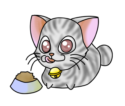 Meal cat 2