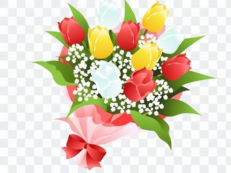 郁金香花束