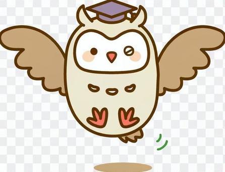 貓頭鷹博士眨眼