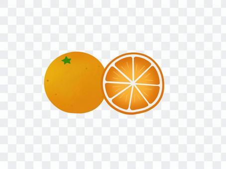 みかん フルーツ