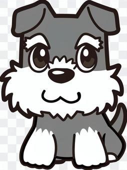 狗_迷你雪納瑞
