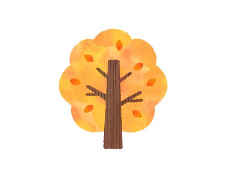 變成橙色的樹