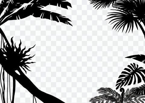 叢林的輪廓