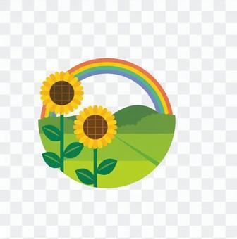 Sunflowers and rainbows