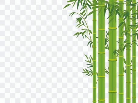 竹與竹葉_竹摳圖01