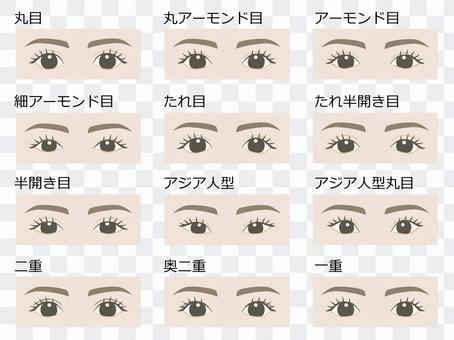 目の形の種類